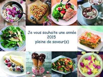 VOEUX 2015 blog